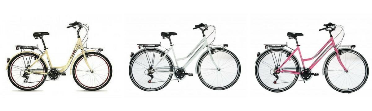 Azienda biciclette da trekking e bici da città - Gruppo Schiano